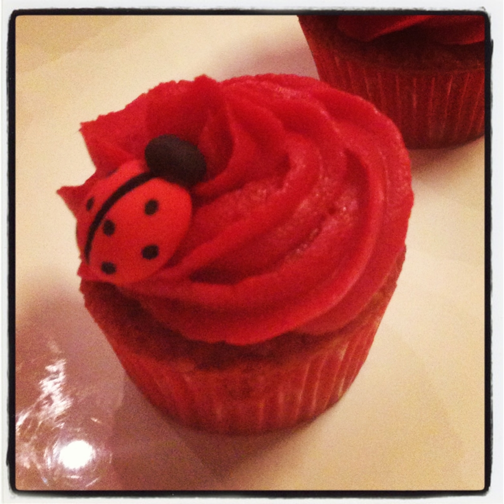 cupcake coccinelle