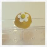 cake pop fleur jaune