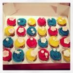 Cupcakes bleu/rose/jaune
