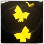 papillons jaunes