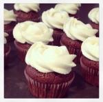 cupcakes choc/vanille