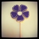 biscuit fleur pourpre