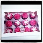 cupcakes hiver