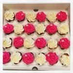 cupcakes rose blanc