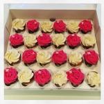 pink-white cupcakes
